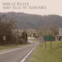 download lagu Morgan Wallen - More than My Hometown