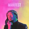 Jabriel - Manifest  artwork