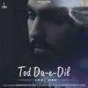 Ammy Virk - Tod Da-e-Dil (Single)