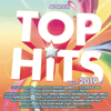 Various Artists - Top Hits - Estate 2019 artwork