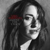 Sara Bareilles - Amidst the Chaos  artwork