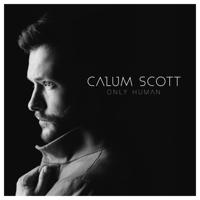download lagu Calum Scott - You Are the Reason