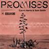 Calvin Harris, Sam Smith - Promises artwork