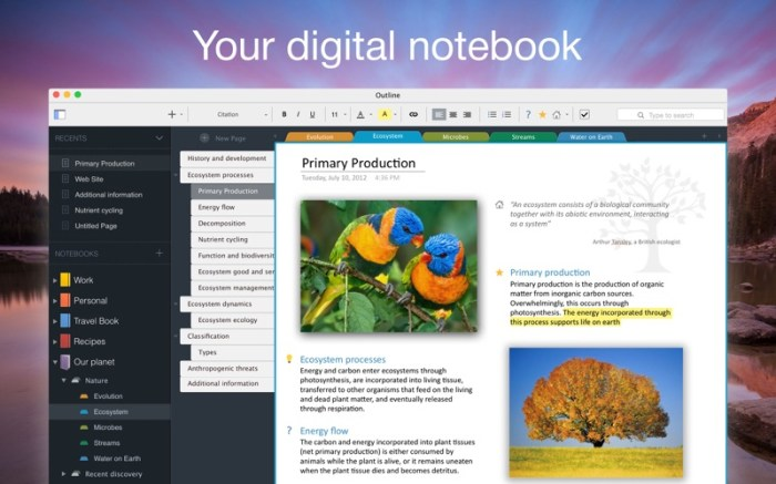 Outline –your digital notebook Screenshot 01 13at2wn