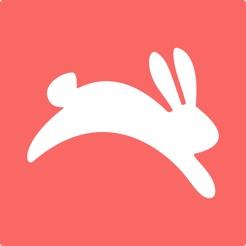Hopper - Predicciones de Vuelo