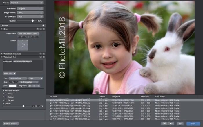 PhotoMill Screenshot 1 x7jqjn