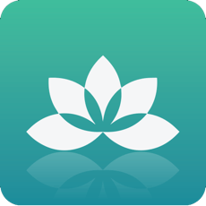Yoga Studio: At-home classes