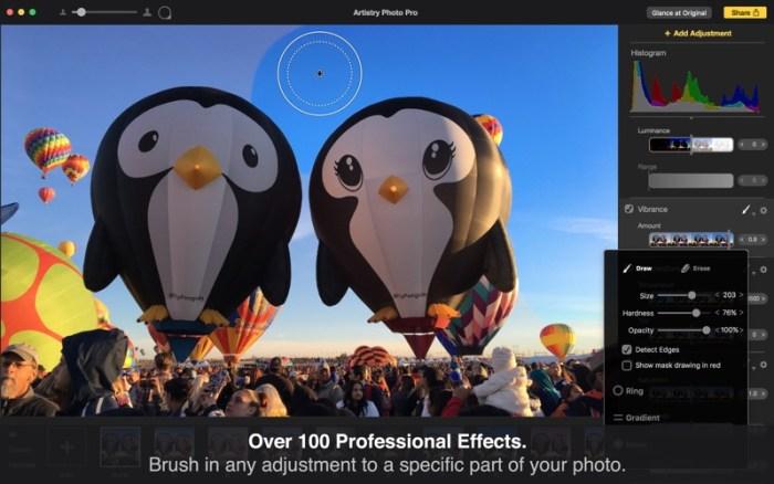 2_Artistry_Photo_Pro_Photo_Edit.jpg