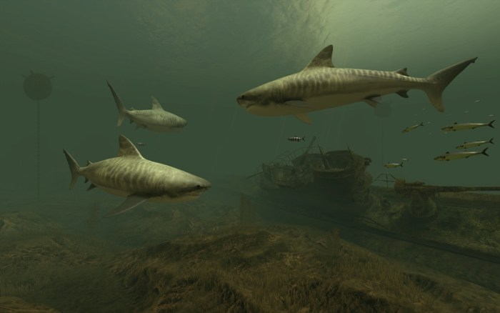 4_Sharks_3D.jpg