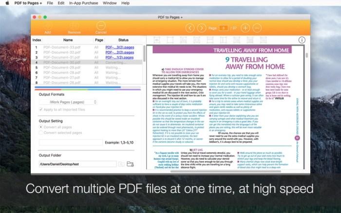 PDF to Pages + Screenshot 04 xozmsn