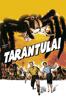 Jack Arnold - Tarantula  artwork