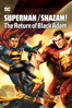 Unknown - Superman/Shazam!: The Return of Black Adam  artwork