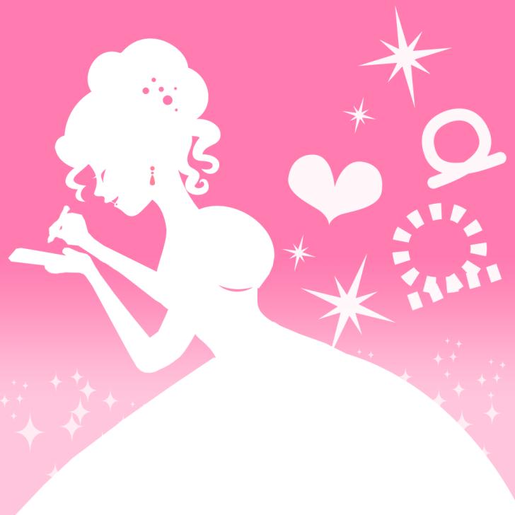 プリンセス カメラ