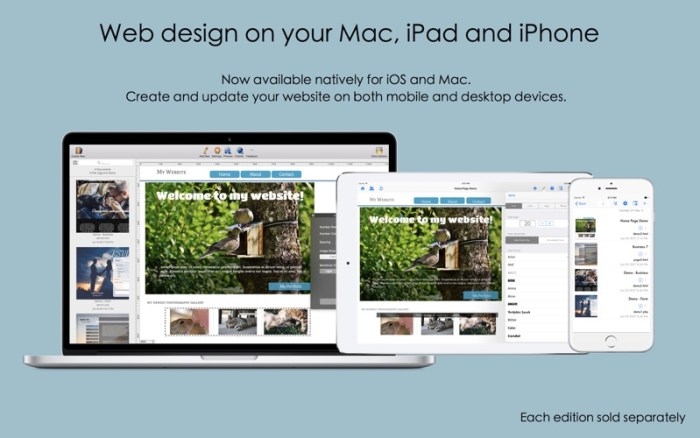1_HTML_Egg_Pro_WYSIWYG_Designer.jpg