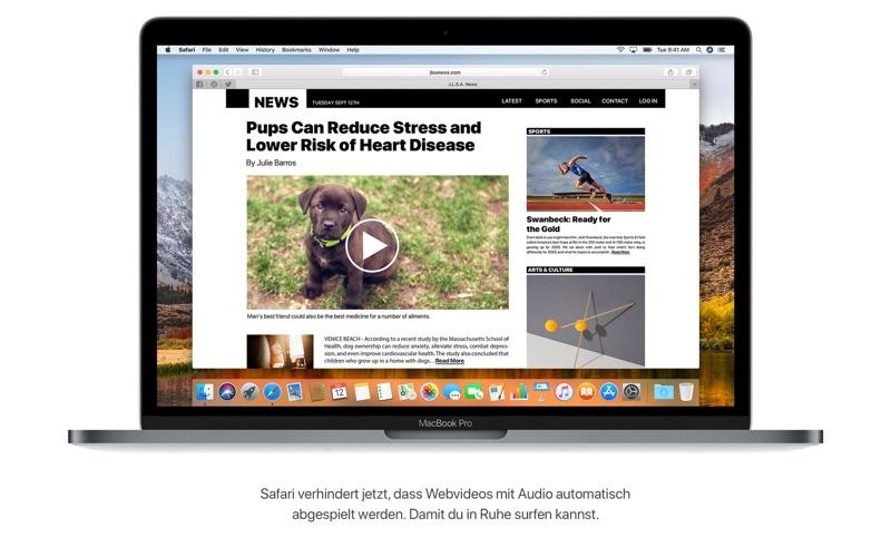 macOS High Sierra Screenshot