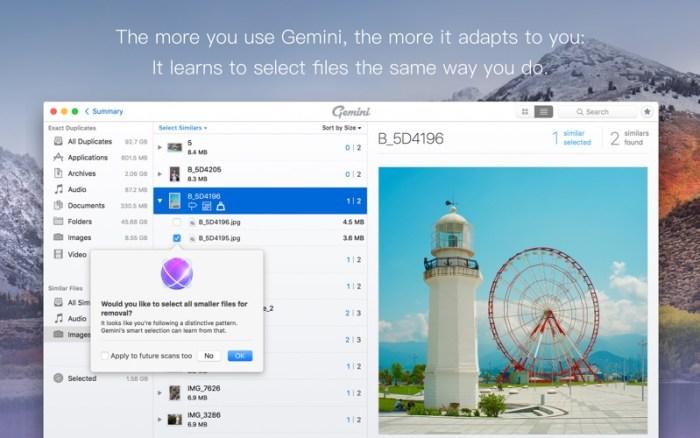 5_Gemini_2_The_Duplicate_Finder.jpg
