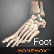 BoneBox Foot