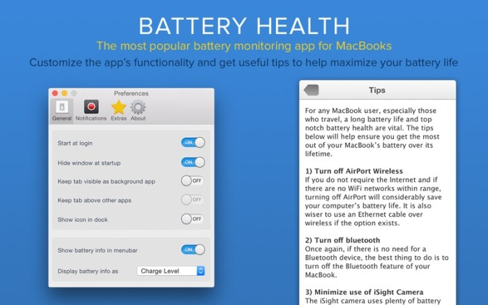 2_Battery_Health_Monitor_Stats.jpg