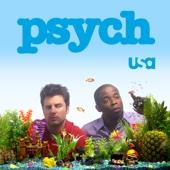 Psych - Psych, Season 3  artwork
