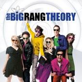 The Big Bang Theory - The Big Bang Theory, Season 10  artwork