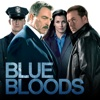 Blue Bloods - Foreign Interference artwork