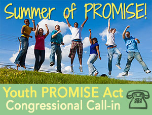 Summer-of-PROMISE-logo-final