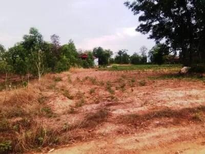 3 rai farm Land Chaiyaphum
