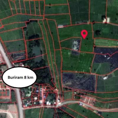 Farmland for sale in Buriram