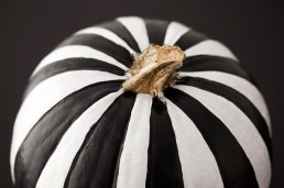 Black-and-white-striped-pumpkin