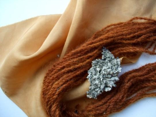 Parmelia saxatilis: a crotal dye