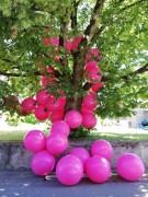 LE GRAND COLLIER, ateliers ouverts, Arnex-Sur-Orbe 2018 65 ballons de baudruches rose pink de 90 cm de diamètre