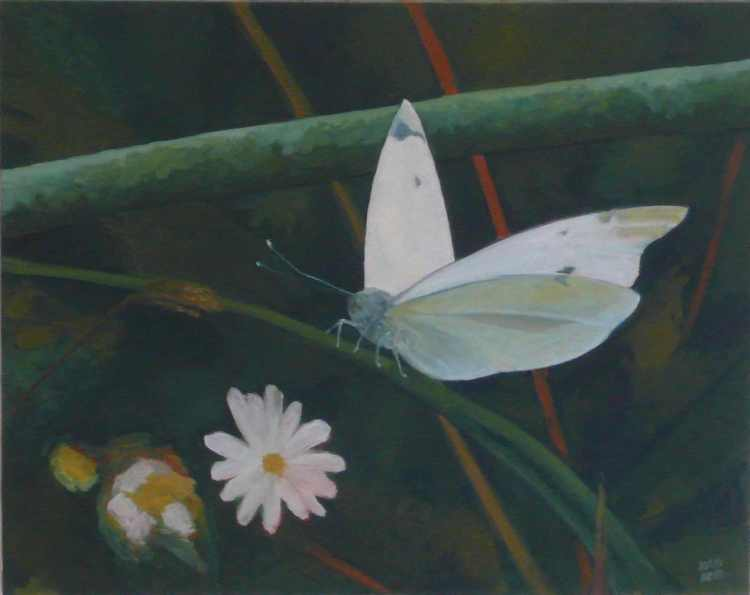 "oil on canvas ""étude papillon 3"""