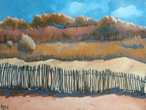 les dunes de Pléhérel plage
