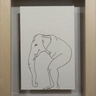 M. Elefant
