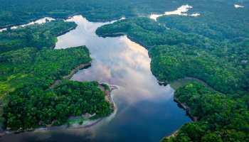 Amazonie Drone