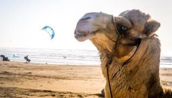 Kitesurf Maroc apprendre