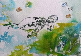 La tortue, small size
