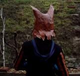 vue de dos, tête de renard