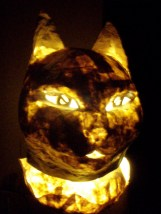 chat lampe