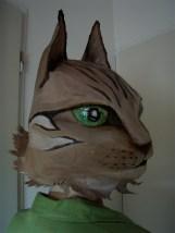 autre chat tigré