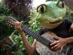 grenouille musicienne