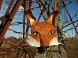 tête de renard; aux yeux escamotables