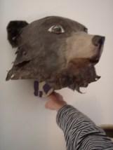 ours brun sur applique