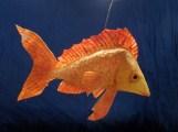 poisson doré, papier de soie