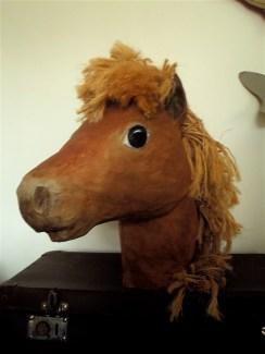 buste poney