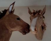 chevaux papier