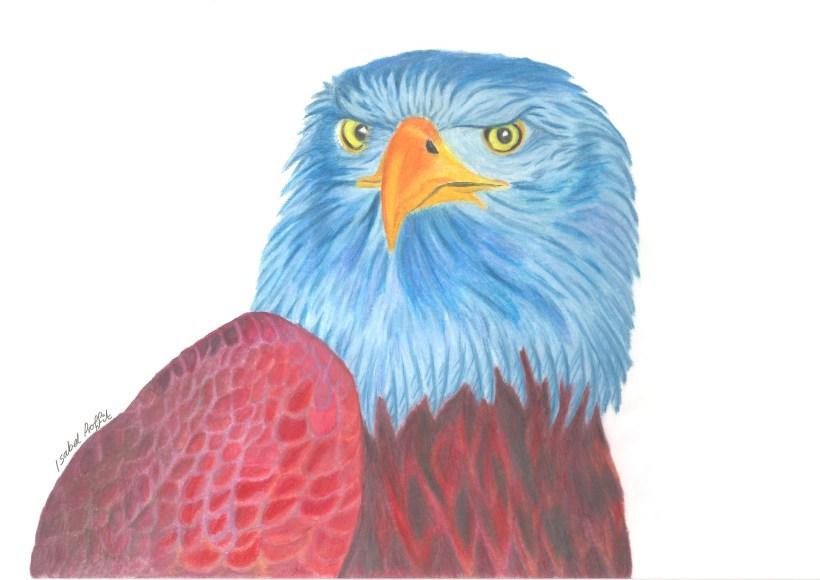 blue eagle.jpg