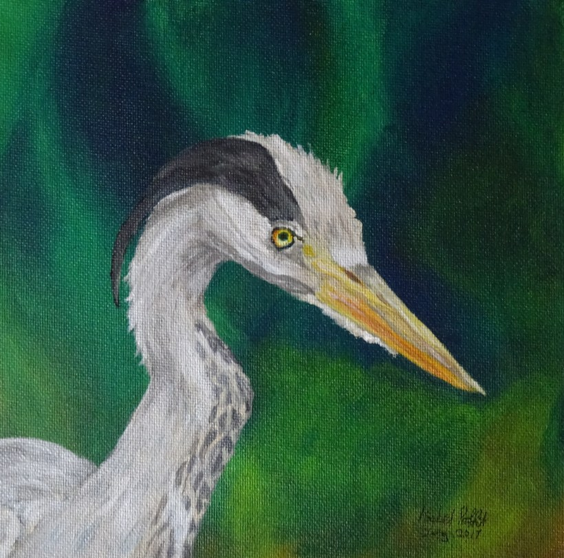cropped heron