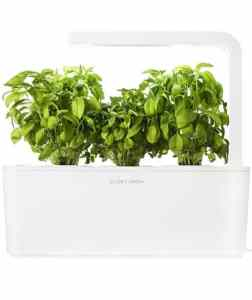 herb garden 252x300 - 6 High Tech Gifts for Valentine's Day
