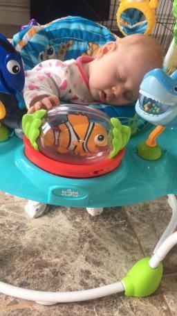 Sleeping in Nemo